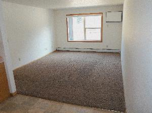 Apartment - 1528 9th Ave SW Faribault, MN 55021 -OwatonnaRentals.com